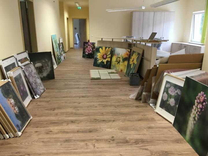 tierische und florale Fotomotive für Pflegeeinrichtung in Niesky